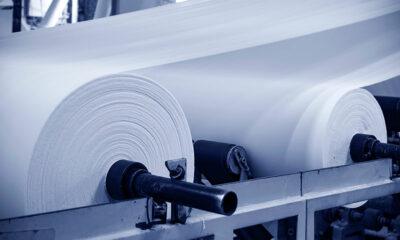 Empresas do segmento de papel e celulose são impactadas pela crise ambiental