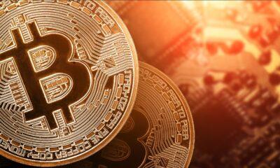 Imposto de Renda 2021: Como declarar criptomoedas sem erros?