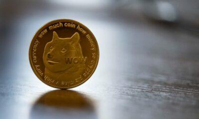 Dogecoin alcança máxima histórica ao marcar US$0,50 por moeda