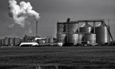 Vibra Energia celebra acordo de cooperação por Biometano com ZEG Biogás e Energia